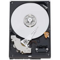 WD Blue, 320GB