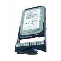 IBM Hot Plug 600GB 15k rpm SAS 6G 3.5