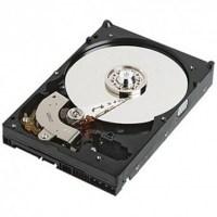 IBM Hot Plug 250GB 7.200 rpm SATA 3.5